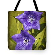 Balloon Flower Tote Bag by Marcia Colelli