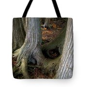 Barky Barky Trees Tote Bag by Michelle Calkins