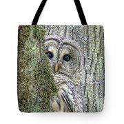 Barred Owl Peek A Boo Tote Bag by Jennie Marie Schell