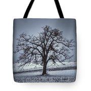 Barren Winter Scene With Tree Tote Bag by Dan Friend