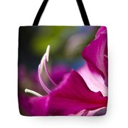 Bauhinia Purpurea - Hawaiian Orchid Tree Tote Bag by Sharon Mau