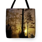 Bayou Sunrise Tote Bag by Lianne Schneider