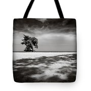 Beach Tree Tote Bag by Dave Bowman