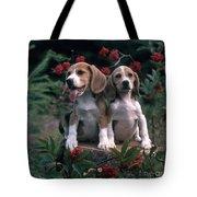 Beagles Tote Bag by Hans Reinhard
