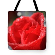 Beautiful as a Rose Tote Bag by Cheryl Young