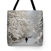Beautiful Forest In Winter With Snow Covered Trees Tote Bag by Matthias Hauser