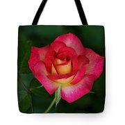 Beautiful Rose Tote Bag by Sandy Keeton
