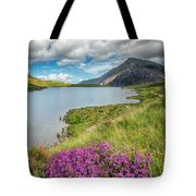 Beautiful Wales Tote Bag by Adrian Evans