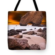 Beauty Essence Tote Bag by Jorge Maia