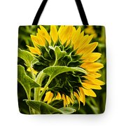 Beauty From The Back Tote Bag by Christi Kraft