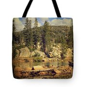 Beauty You Find Along the Way Tote Bag by Laurie Search