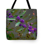 Beautyberry Tote Bag by Frank Tozier