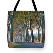 Beloved Plane Trees Tote Bag by France  Art