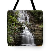 Benton Falls Tote Bag by Debra and Dave Vanderlaan