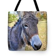 Bet He Gets Good Reception Tote Bag by Jan Amiss Photography
