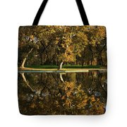 Bidwell Park Reflections Tote Bag by James Eddy