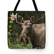 Big Guy Tote Bag by Rick  Monyahan