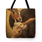 Bighorn Sheep Of The Arkansas River  Tote Bag by Priscilla Burgers