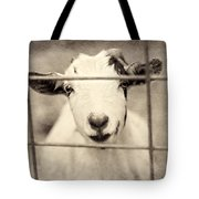 Billy G Tote Bag by Amy Tyler
