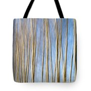 Birch Trees Tote Bag by Stelios Kleanthous