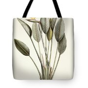 Bird Of Paradise Tote Bag by Pierre Joseph Redoute