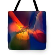 Bird On A Snowboard Tote Bag by Omaste Witkowski