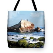 Bird Sentry Rock At Dana Point Harbor Tote Bag by Elaine Plesser
