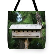 Birdhouse Takeover  Tote Bag by Kym Backland