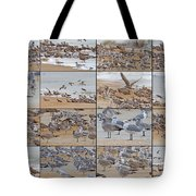 Birds Of Many Feathers Tote Bag by Betsy C Knapp