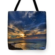 Birdy Bird At Hilton Beach Tote Bag by Ron Shoshani