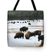 Bison Cows Browsing Tote Bag by Kae Cheatham