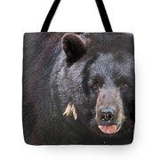 Black Bear Tote Bag by Meg Rousher