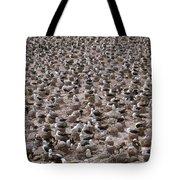 Black-browed Albatross Nesting Colony Tote Bag by Art Wolfe