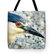 Black Crowned Night Heron 2 Tote Bag by Bob and Nadine Johnston