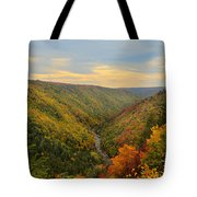 Blackwater Gorge With Fall Leaves Tote Bag by Dan Friend