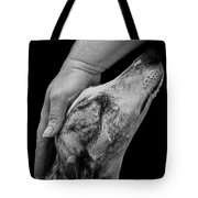 Blind Faith Tote Bag by Linsey Williams