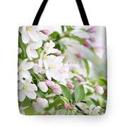 Blooming Apple Tree Tote Bag by Elena Elisseeva