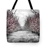 Blooming peach orchard Tote Bag by Elena Elisseeva