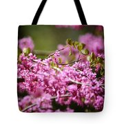 Blooming Redbud Tree Cercis Canadensis Tote Bag by Rebecca Sherman