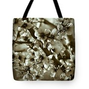 Blossoms Tote Bag by Frank Tschakert
