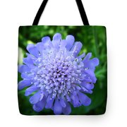 Blue Tote Bag by Aimee L Maher Photography and Art Visit ALMGallerydotcom
