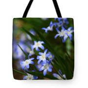 Blue For You Tote Bag by Neal  Eslinger