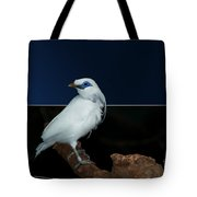 Blue Mask Bandit Bird Tote Bag by Thomas Woolworth