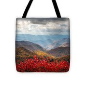 Blue Ridge Parkway Fall Foliage - The Light Tote Bag by Dave Allen