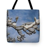 Blue Skies in Winter Tote Bag by Bill Cannon