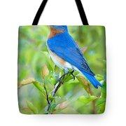 Bluebird Joy Tote Bag by William Jobes
