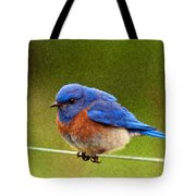 Bluebird  Painting Tote Bag by Jean Noren