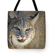 Bobcat Tote Bag by William H. Mullins