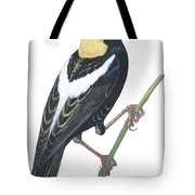 Bobolink Tote Bag by Anonymous