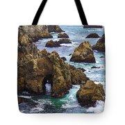 Bodega Head Tote Bag by Garry Gay